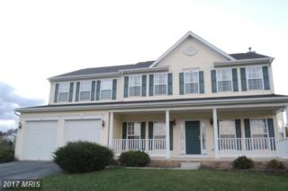 625 Crushed Apple Drive, Martinsburg, WV 25403 (#BE9814939) :: Pearson Smith Realty