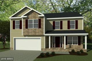 Diamante Drive, Inwood, WV 25428 (#BE9822732) :: Pearson Smith Realty