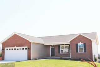 Obadiah Drive, Martinsburg, WV 25405 (#BE9824494) :: Pearson Smith Realty