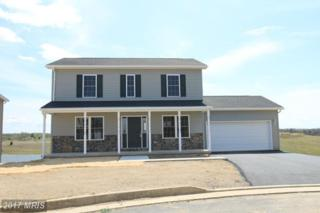 103 Peggy Court, Bunker Hill, WV 25413 (#BE9856256) :: Pearson Smith Realty