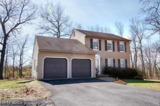 101 Manassas Drive, Falling Waters, WV 25419 (#BE9872413) :: Pearson Smith Realty