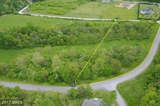 Corner Of Chesapeake Lane, Hedgesville, WV 25427 (#BE9885859) :: Pearson Smith Realty