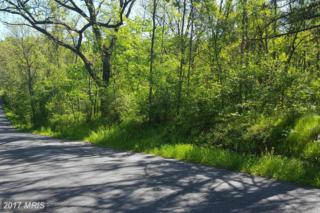 Swinging Bridge Road, Hedgesville, WV 25427 (#BE9886713) :: Pearson Smith Realty