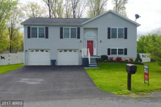 316 Constitution Boulevard, Martinsburg, WV 25405 (#BE9910541) :: Pearson Smith Realty