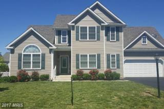 267 Shannon Court, Inwood, WV 25428 (#BE9932318) :: Pearson Smith Realty