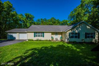 242 Driftwood Drive, Gerrardstown, WV 25420 (#BE9939707) :: Pearson Smith Realty