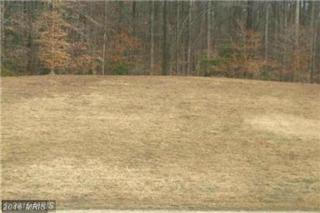 6245 Federal Oak Drive, Sunderland, MD 20689 (#CA9768053) :: Pearson Smith Realty