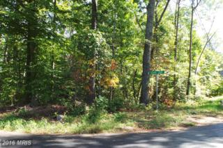 12644 Calvert Court, Lusby, MD 20657 (#CA9803297) :: Pearson Smith Realty