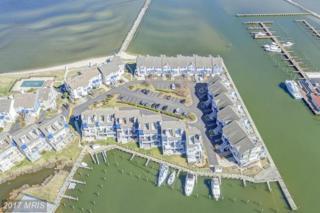 8066 Windward Key Drive, Chesapeake Beach, MD 20732 (#CA9879764) :: LoCoMusings