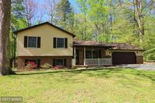 282 Cove Drive, Lusby, MD 20657 (#CA9904445) :: Pearson Smith Realty