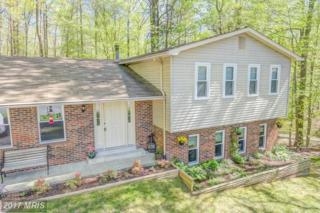 6305 Brookeview Court, Chesapeake Beach, MD 20732 (#CA9920628) :: Pearson Smith Realty