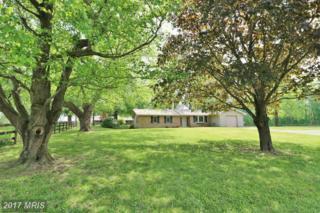 540 Carla Drive, Huntingtown, MD 20639 (#CA9927919) :: Pearson Smith Realty
