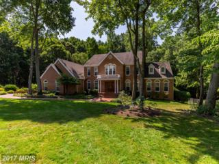 2890 Dunleigh Drive, Dunkirk, MD 20754 (#CA9930626) :: Pearson Smith Realty