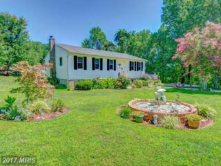 8814 Saint Andrews Drive, Chesapeake Beach, MD 20732 (#CA9940508) :: Pearson Smith Realty