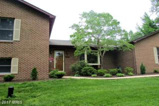 9602 Ridge View Drive, Owings, MD 20736 (#CA9957442) :: Pearson Smith Realty