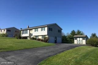 2 Darrin Avenue, Newburg, PA 17240 (#CB9717479) :: Pearson Smith Realty