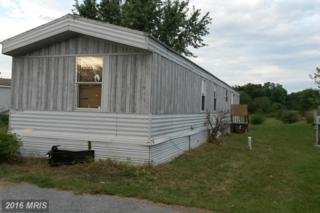 10 Cherokee Drive, Shippensburg, PA 17257 (#CB9771700) :: Pearson Smith Realty