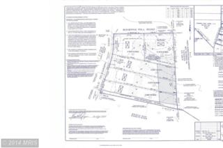 Lot 1 Old Telegraph Road Road, Chesapeake City, MD 21915 (#CC8414388) :: Pearson Smith Realty