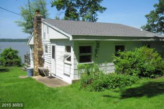 87 Wood Duck Lane, Elkton, MD 21921 (#CC8704836) :: Pearson Smith Realty