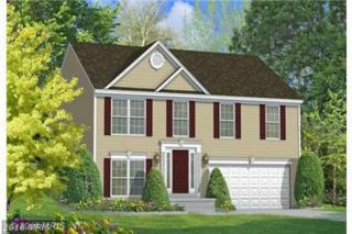 Pine Cone Drive, North East, MD 21901 (#CC9661797) :: Pearson Smith Realty