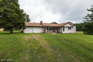 2287 Old Elk Neck Road, Elkton, MD 21921 (#CC9729712) :: Pearson Smith Realty