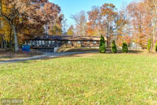 480 Ridge Road, Rising Sun, MD 21911 (#CC9816873) :: Pearson Smith Realty