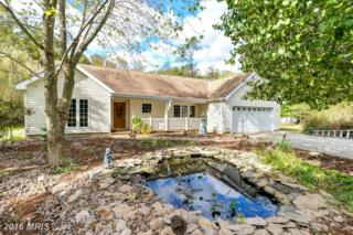 738 Pond Neck Road, Earleville, MD 21919 (#CC9816947) :: Pearson Smith Realty