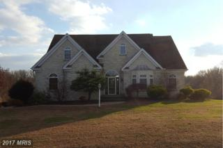 96 Heather Drive, Earleville, MD 21919 (#CC9828778) :: Pearson Smith Realty