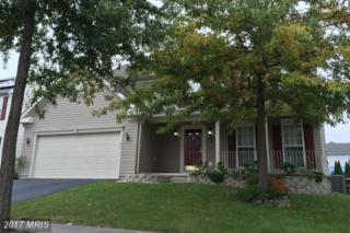 211 Suburban Drive, Elkton, MD 21921 (#CC9832557) :: Pearson Smith Realty