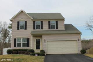 131 Cool Springs Road, North East, MD 21901 (#CC9867488) :: Pearson Smith Realty