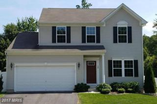 56 Bay View Woods Loop, North East, MD 21901 (#CC9868643) :: Pearson Smith Realty