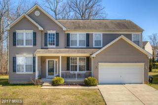 115 Patton Way, Elkton, MD 21921 (#CC9895982) :: Pearson Smith Realty