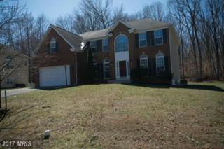 130 Bethel Springs Drive, North East, MD 21901 (#CC9896243) :: LoCoMusings