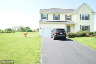 125 Frank Crane Drive, North East, MD 21901 (#CC9904420) :: Pearson Smith Realty