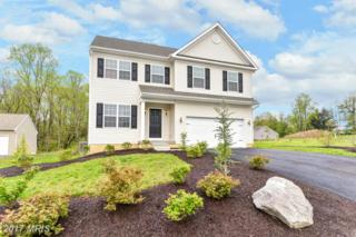 4 Dill Court, Elkton, MD 21921 (#CC9924357) :: Pearson Smith Realty