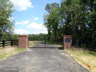 Windsor Place, Pomfret, MD 20675 (#CH7871945) :: Pearson Smith Realty
