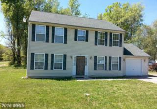 29 Woodland Drive, Indian Head, MD 20640 (#CH9645600) :: Pearson Smith Realty