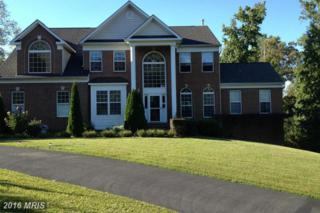 16770 Persica Lane, Hughesville, MD 20637 (#CH9652347) :: Pearson Smith Realty