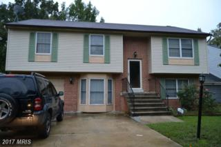 6313 Beluga Court, Waldorf, MD 20603 (#CH9778652) :: Pearson Smith Realty