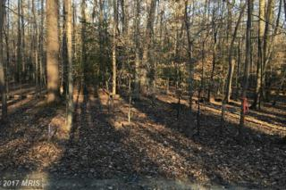 1 Old Landing Road, Accokeek, MD 20607 (#CH9826052) :: Pearson Smith Realty