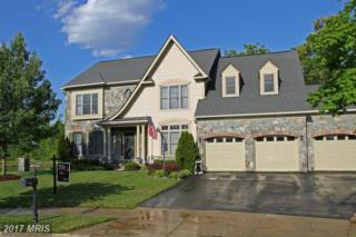3029 Dahoon Court, Waldorf, MD 20603 (#CH9909460) :: Pearson Smith Realty