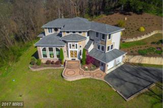 7680 Chapel Point Road, Port Tobacco, MD 20677 (#CH9910854) :: Pearson Smith Realty