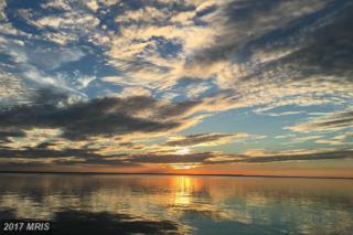 15201 Potomac River Drive, Cobb Island, MD 20625 (#CH9914346) :: Pearson Smith Realty