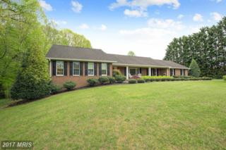 8725 Locust Grove Drive, Port Tobacco, MD 20677 (#CH9918013) :: Pearson Smith Realty