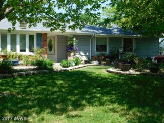 6107 Ronna Circle, Waldorf, MD 20601 (#CH9930303) :: Pearson Smith Realty