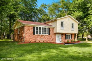 8009 Holly Avenue, Waldorf, MD 20601 (#CH9950068) :: Pearson Smith Realty