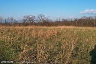 Old Charlestown Road, Berryville, VA 22611 (#CL8578476) :: Pearson Smith Realty