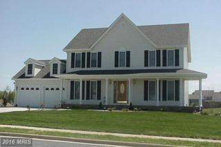 0 Berrys Ferry Road, White Post, VA 22663 (#CL9812479) :: Pearson Smith Realty