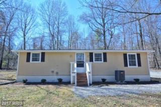 241 Alder Lane, Bluemont, VA 20135 (#CL9898397) :: Pearson Smith Realty