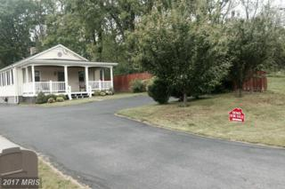 6802 Lord Fairfax Highway, Berryville, VA 22611 (#CL9931701) :: Pearson Smith Realty